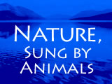 Nature, Sung by Animals