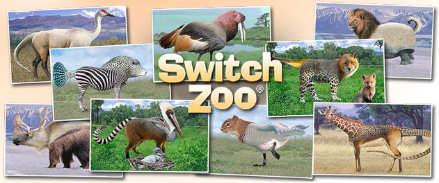 a variety of switcheroos from Switch Zoo